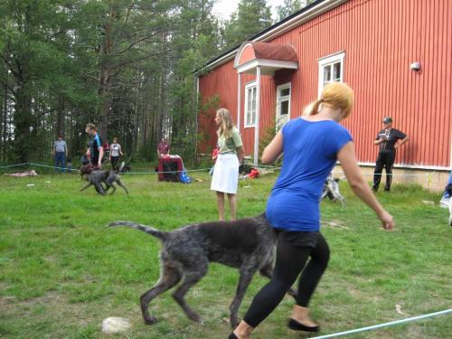 Tuomarina Leni Finne Javarus 14.8.2010 (Medium)